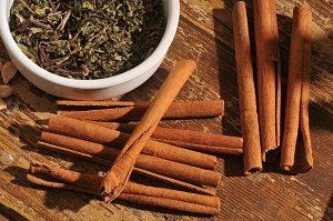 Ayurvéda et ses épices pour soigner: la cannelle et des herbes