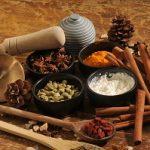 L'ayurvéda en toute sa splendeur avec diverses couleurs et épices.