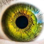 Détail d'une iris à l'iridoscope pour la démonstration de l'iridologie, une des branches de la naturopathie.