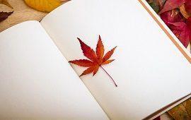 devenir naturopathe avec feuille et stylo