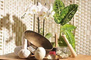 Huiles essentiels, plantes et autres outils de la naturopathie.